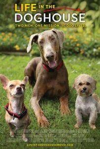 Life in the Doghouse movie poster, 3 dogs looking at camera